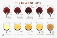 colours-of-wine