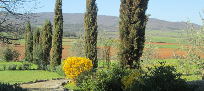 Toscana-paesaggio, Casole d'Elsa, Pievescola, Ristorante alla Pieve